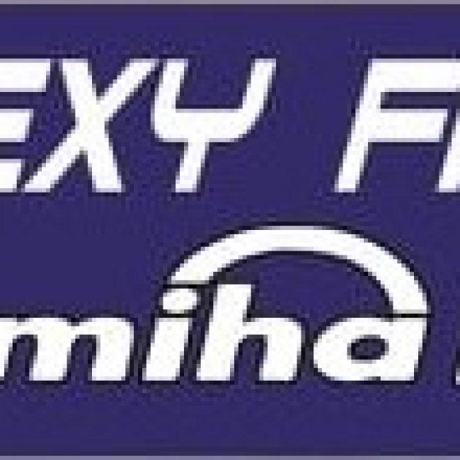 Flexy Fitness by Miha Bodytec